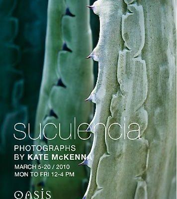 Suculencia – Cacti Transformed